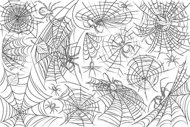 Araignée Et Web Dessinés à La Main Vecteur Premium