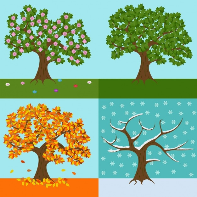 Un arbre de chaque conception de la saison Vecteur gratuit