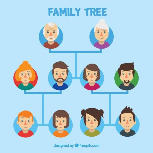 arbre g u00e9n u00e9alogique illustration
