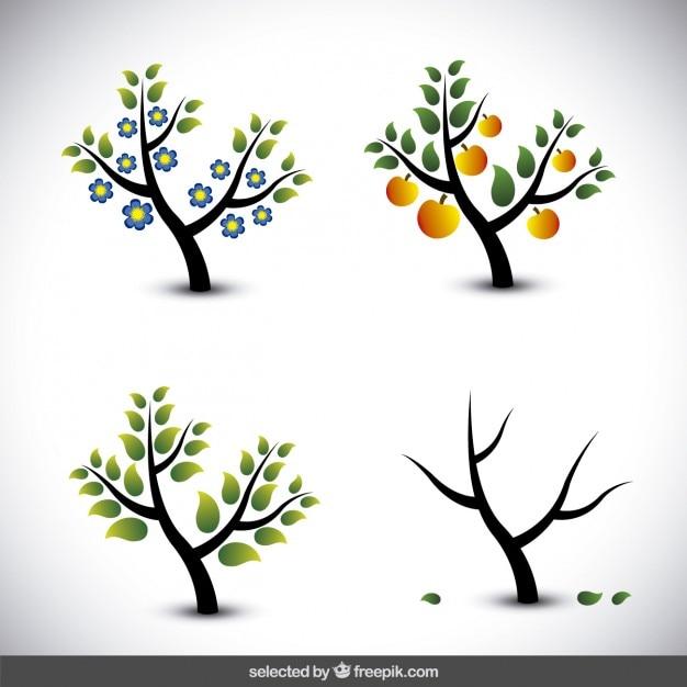 Arbre illustration dans les différentes saisons Vecteur gratuit