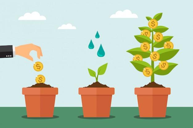 Arbre monétaire et processus de croissance financière Vecteur Premium