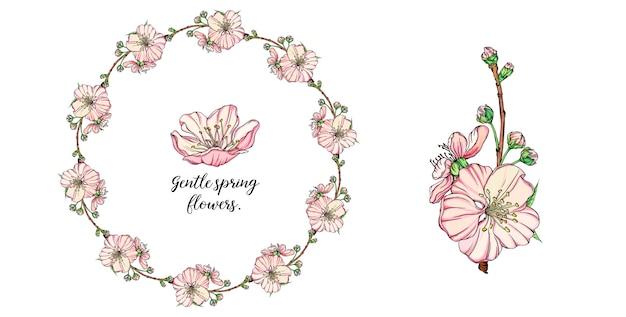 Arrangement de fleurs de printemps délicat de vecteur Vecteur Premium