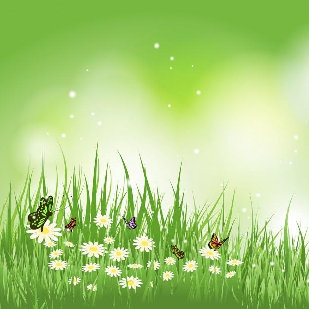Arri re plan de papillons qui volent dans l 39 herbe sur les for Image pour arriere plan gratuit pc