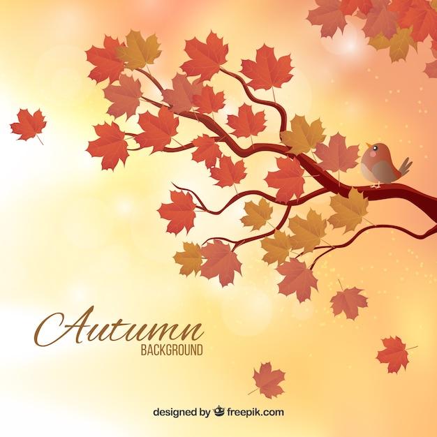 Arrière-plan flou automne avec des branches Vecteur gratuit