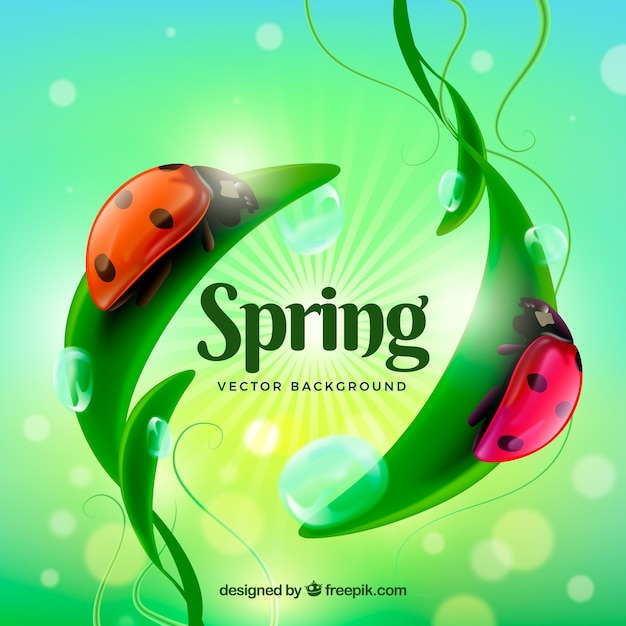 Arrière-plan flou de printemps avec des coccinelles Vecteur gratuit