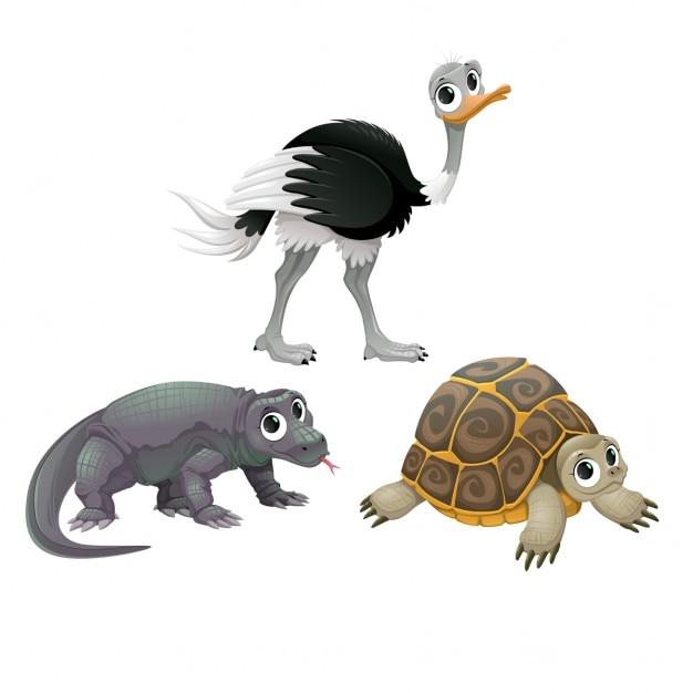 Australian tortue animaux d'autruche drôle et dragon de komodo vector cartoon isolé personnages Vecteur gratuit