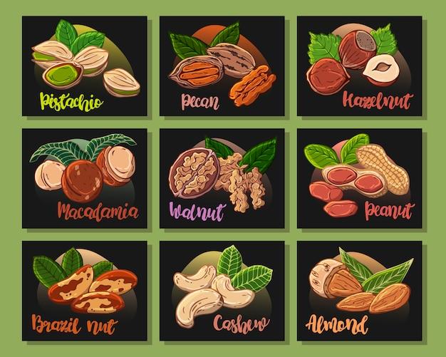 Autocollants: ensemble de différents types de noix. Vecteur Premium