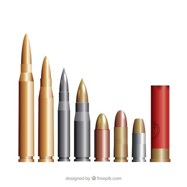 Autre Calibre Des Munitions Vecteur Premium