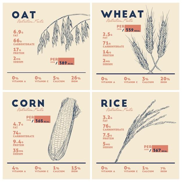 Avantages pour la santé des céréales, du riz, du blé, de l'avoine et du maïs. Vecteur Premium