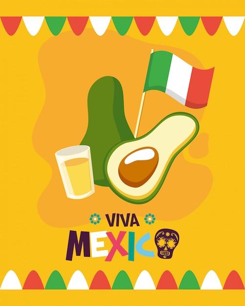 Avocat et tequila tourné Vecteur gratuit