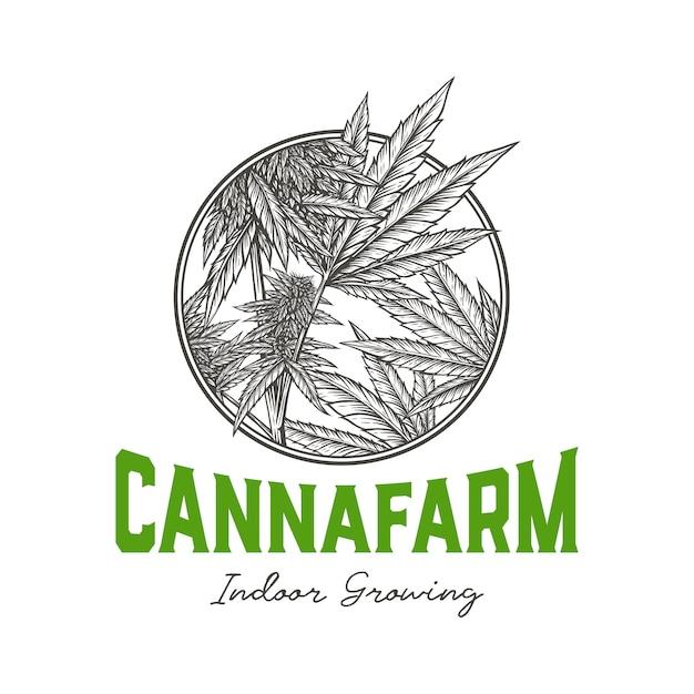 Badge Intérieur Cannabis Farm Vecteur Premium