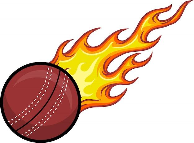 Balle de cricket Vecteur Premium