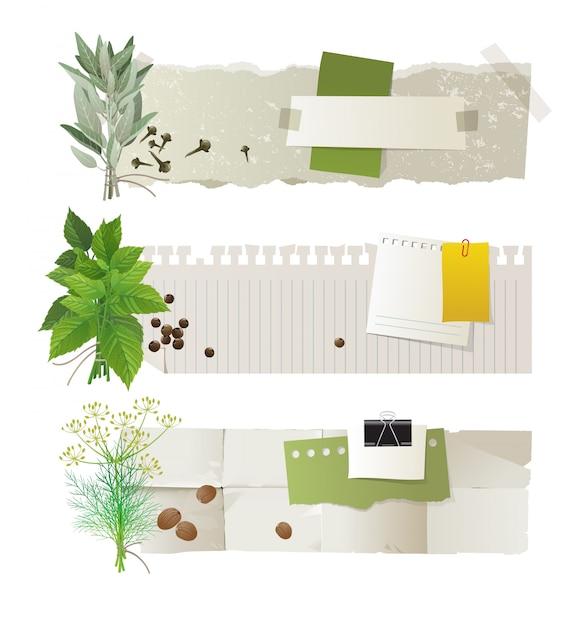 Bannière ensemble à base de plantes Vecteur Premium