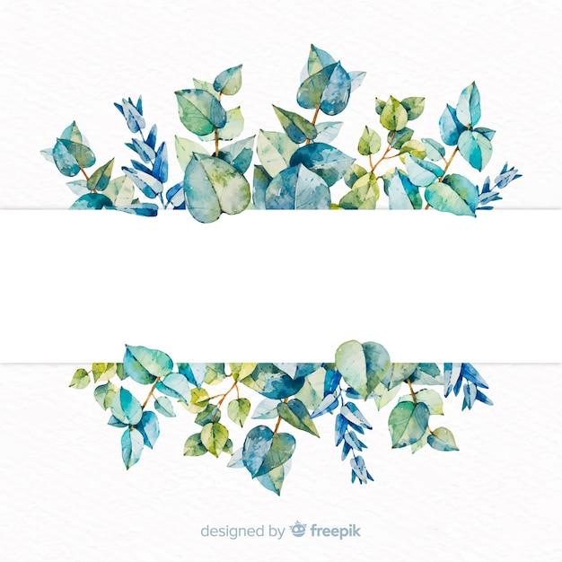 Bannière D'eucalyptus Aquarelle Avec Bannière Vierge Vecteur gratuit