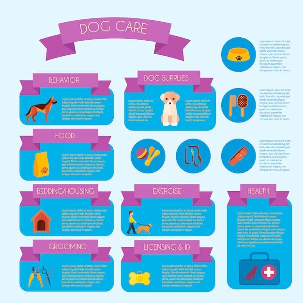 Bannière infographique de soins pour chiens avec des informations sur les soins de santé et les formations comportementales Vecteur gratuit