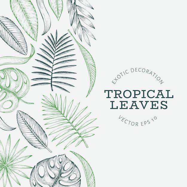 Bannière de plantes tropicales. Vecteur Premium