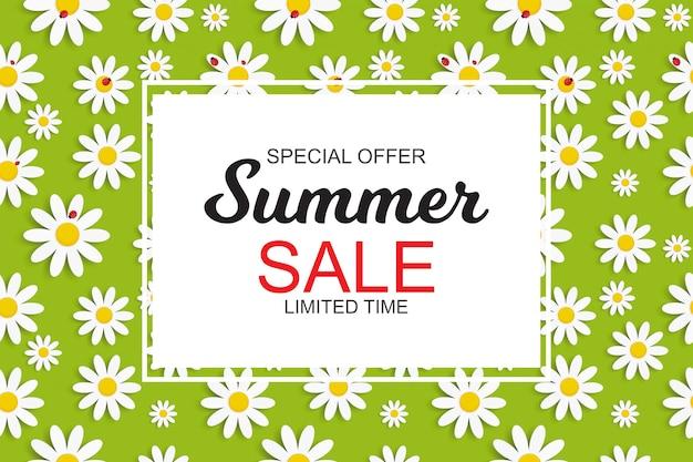 Bannière summer sale avec des fleurs de marguerite Vecteur Premium