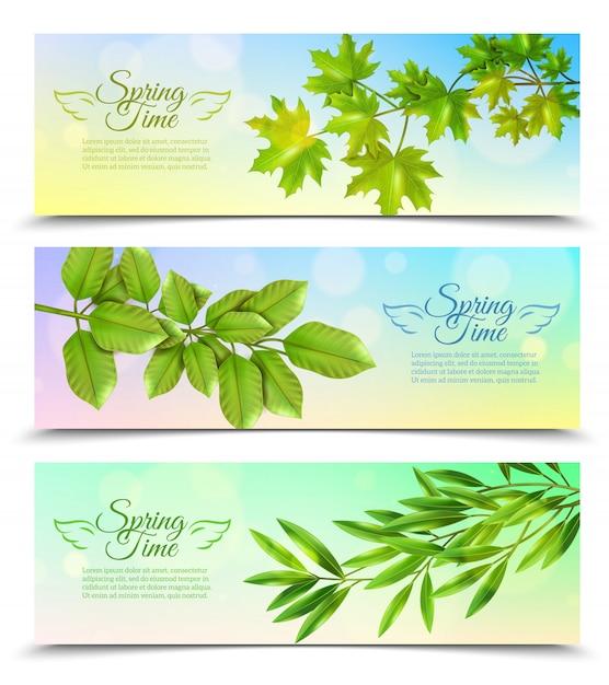 Bannières horizontales sertie de branches vertes Vecteur gratuit
