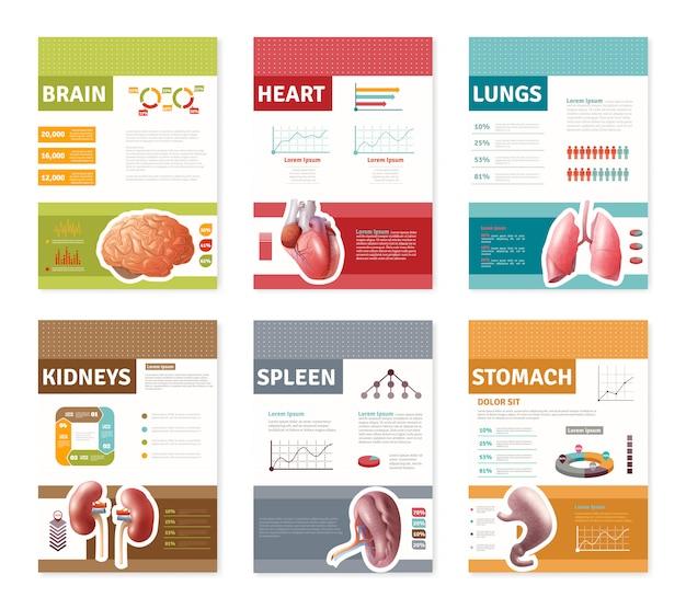 Bannières d'organes humains internes Vecteur gratuit