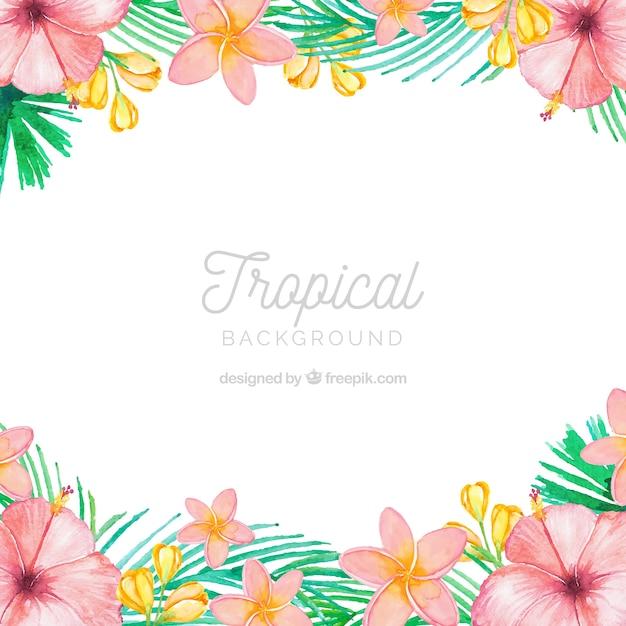 Beau fond aquarelle tropical Vecteur gratuit