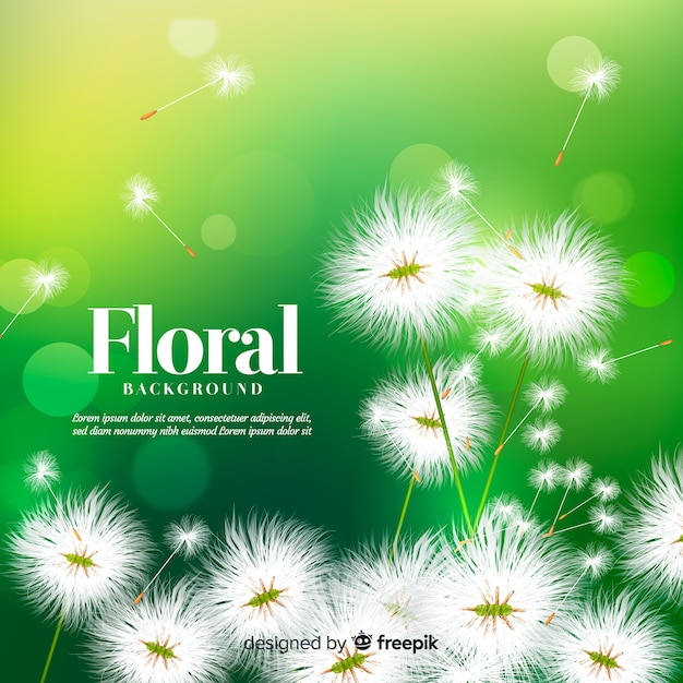 Beau fond floral avec un design réaliste Vecteur gratuit