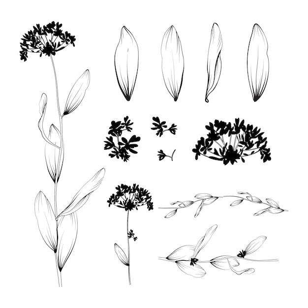 Beau fond floral. éléments de design Vecteur gratuit