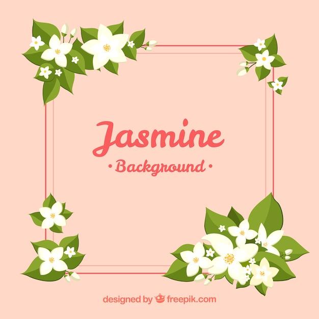 Beau fond de jasmin avec cadre Vecteur gratuit