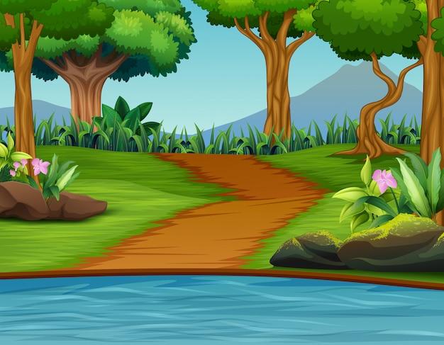 Un beau fond de paysage de nature verdoyante Vecteur Premium