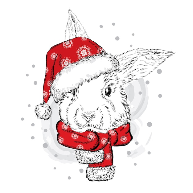 Beau Lapin Dans Un Bonnet De Noel Nol Et Nouvel An  Vecteur Premium