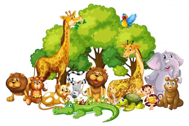Beaucoup De Cutes Dans Le Parc Vecteur gratuit
