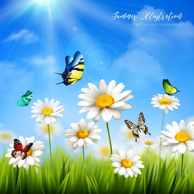Beaux papillons colorés et herbe verte avec des fleurs de camomille fond plat vector illustra Vecteur gratuit