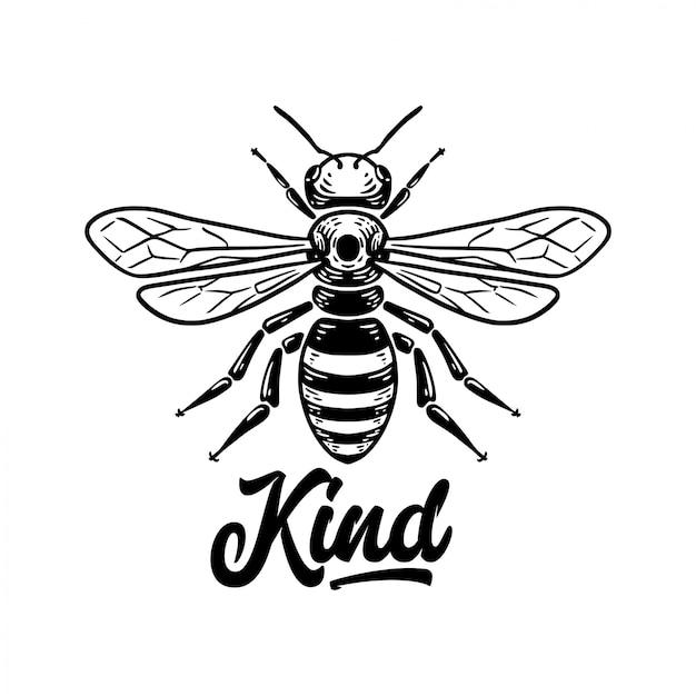 Bee Kind Citation Avec Illustration De L'abeille Vecteur Premium