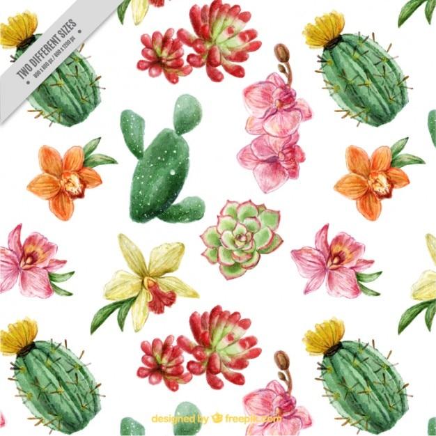 Belle cactus et fleurs de fond avec effet aquarelle Vecteur gratuit