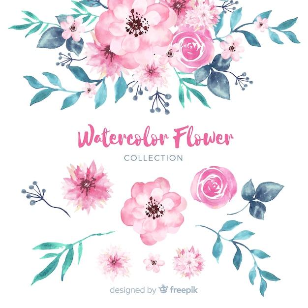 Belle collection de fleurs à l'aquarelle Vecteur gratuit