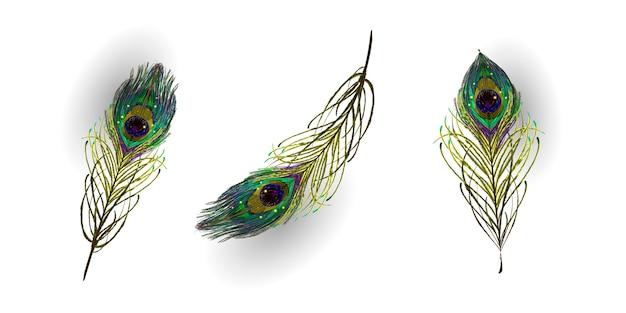 Belle collection de plumes de paon réalistes de vecteur Vecteur Premium