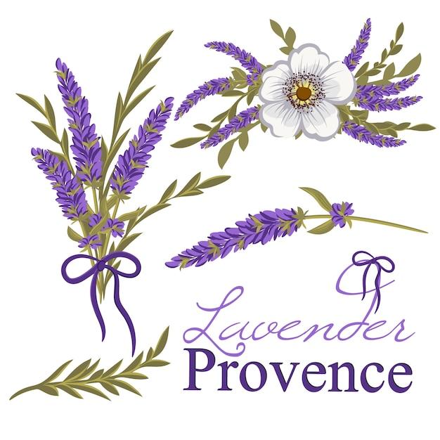Belle conception florale Vecteur Premium