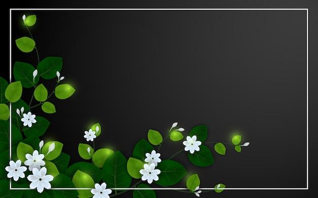 Belle fleur de jasmin sur fond noir Vecteur Premium