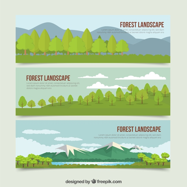 Belles Bannières Paysages De Nature Dessinés à La Main Vecteur gratuit