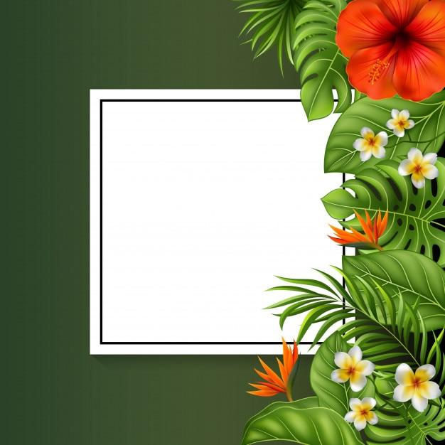 Belles Fleurs Et Feuilles Avec Signe Vierge Télécharger