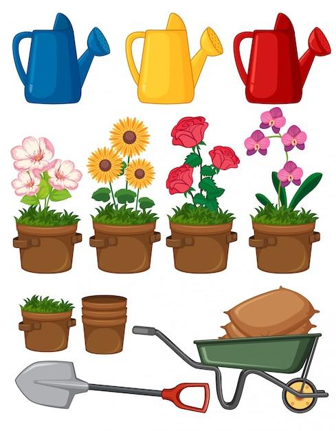Belles Fleurs Et Outils De Jardinage Sur Fond Blanc Vecteur gratuit
