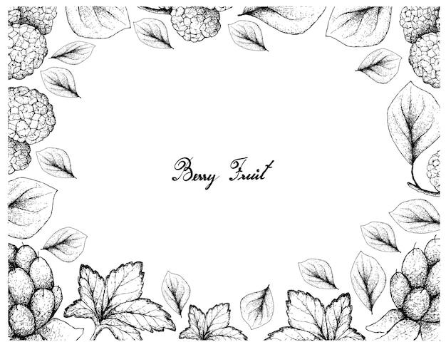 Berry Fruits Illustration Cadre De Croquis Dessiné à La Main Vecteur Premium