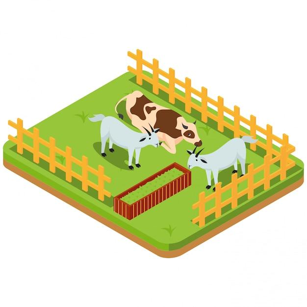 Bétail, y compris les chèvres dans les enclos Vecteur Premium