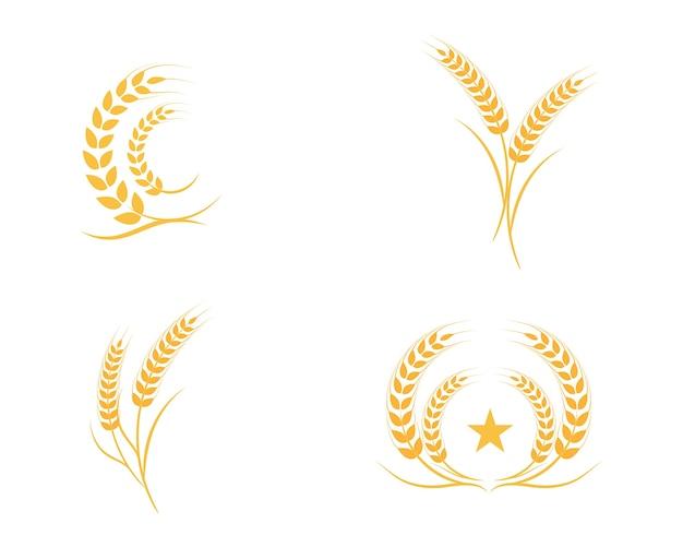 Blé de l'agriculture logo template Vecteur Premium