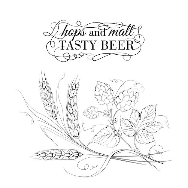 Blé doré et hop sur blanc Vecteur Premium