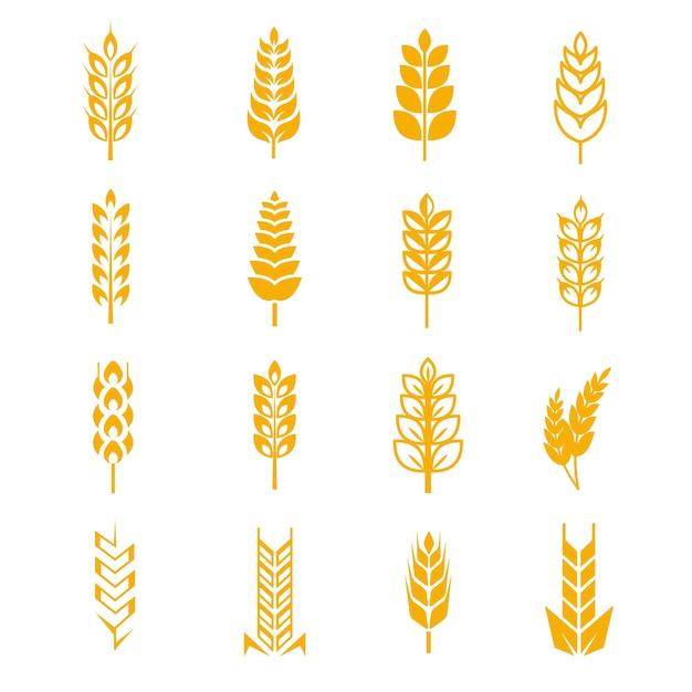 Blé oreilles symboles vectoriels de pain Vecteur Premium