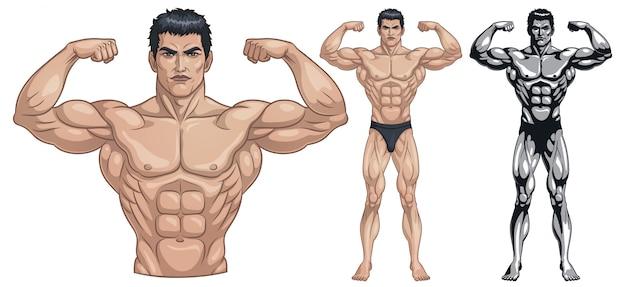 Bodybuilder complet du corps Vecteur Premium