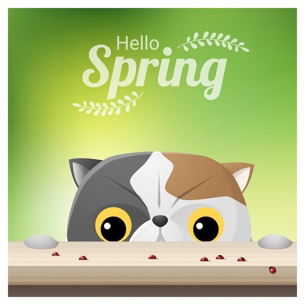 Bonjour fond de printemps avec un chat regardant les coccinelles Vecteur Premium