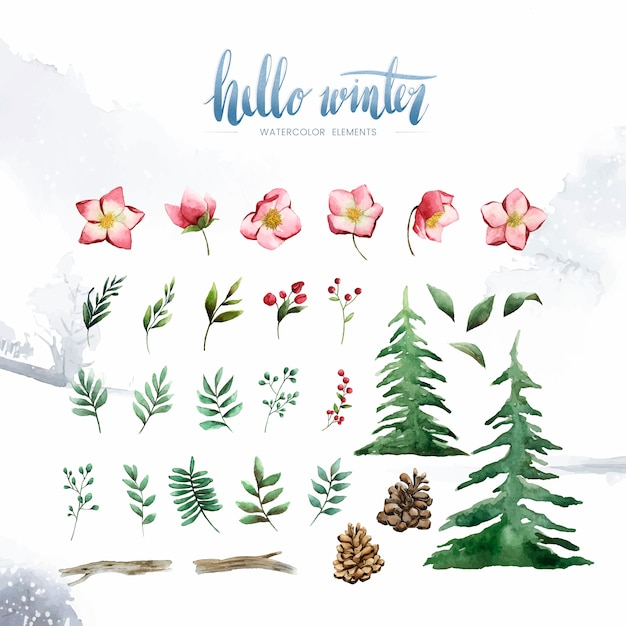 Bonjour Plantes Et Fleurs D'hiver Peints Par Vecteur Aquarelle Vecteur gratuit
