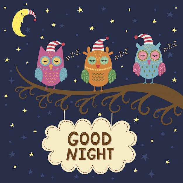 Bonne Nuit Carte Avec Mignons Hiboux Endormis. Vecteur Premium