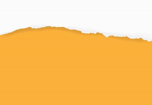 Bords de papier déchirés pour le fond. fond de texture de papier déchiré. Vecteur Premium